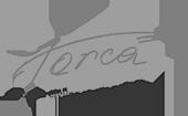 logo-forca